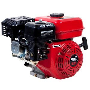 PTM160PRO: Starke 5,5 ps Benzinmotor Profi-Modell 20mm Kurbelwelle